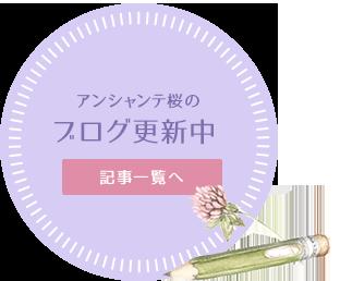 アンシャンテ桜のブログ更新中