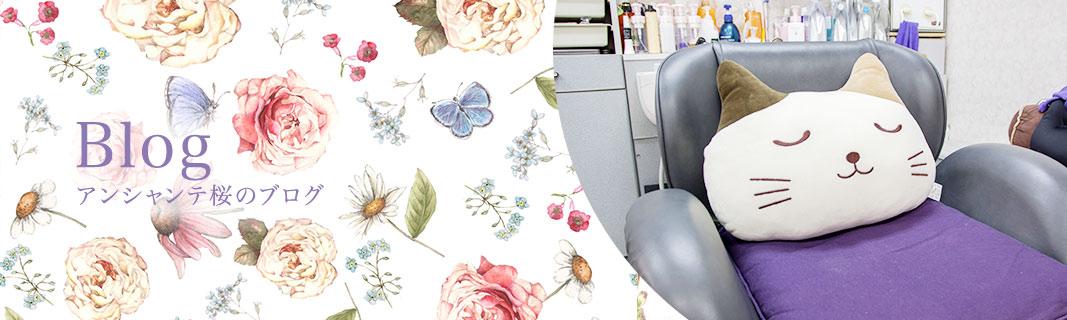 アンシャンテ桜のブログ